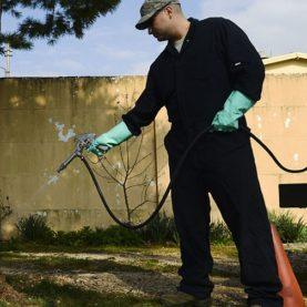 Pestering_pests,_Entomology_sprays_down_threats_150323-F-XD389-010